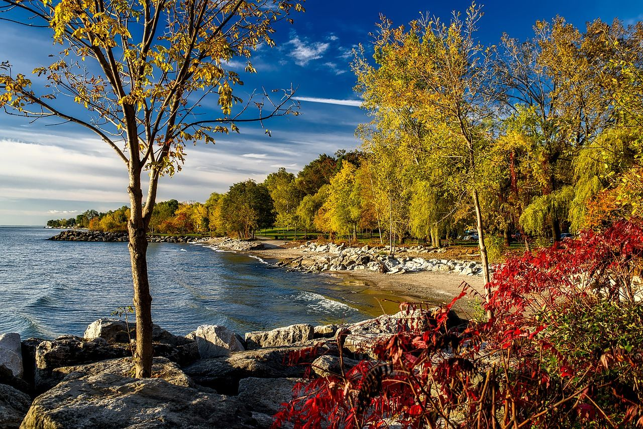 Scenic lake Ontario shoreline with trees in the background